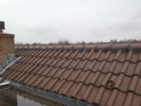 Nokvorst reparatie in Nieuwegein prijs 39 en 29 euro per meter
