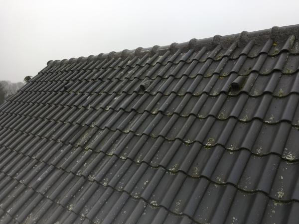Nokvorst reparatie in Breda prijs 39 en 29 euro per meter