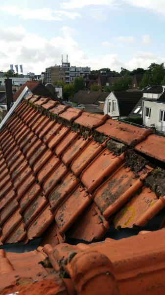 Nokvorst reparatie Helmond Actie prijs